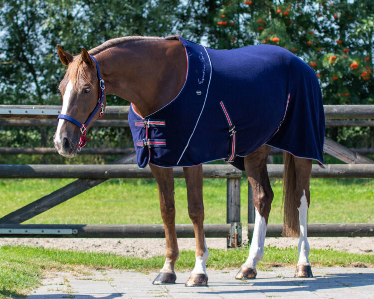 Zirgu segas un aksesuāri
