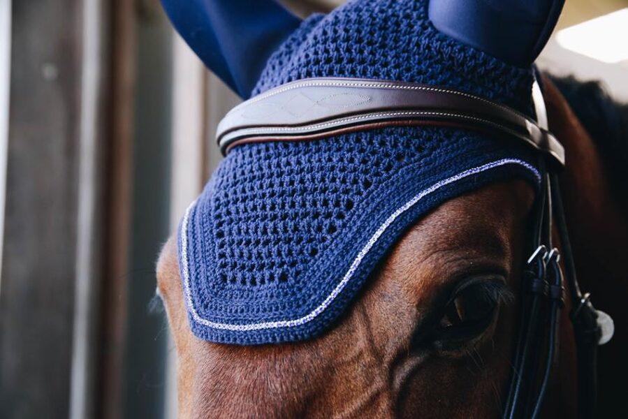 Kentucky Horsewear zirgausis Wellington sparkling